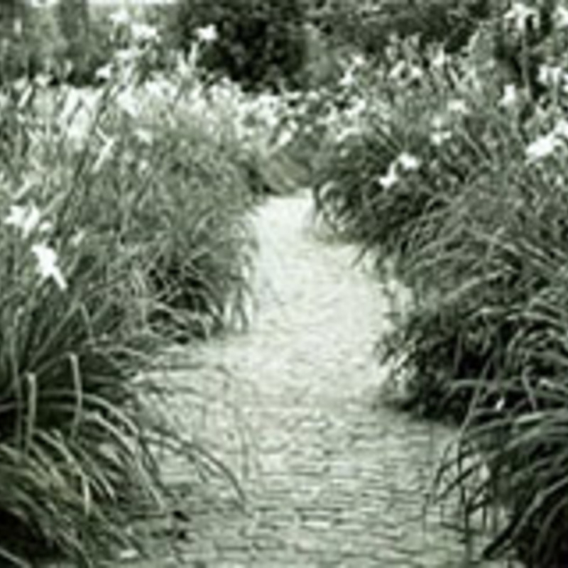 Archives of American Gardens, Smithsonian Institution